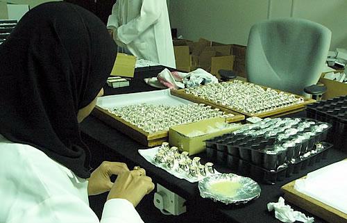 упаковщица в хиджабе