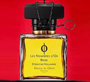 Les Nombres d`Or Rose Etoile Hollande Mona di Orio