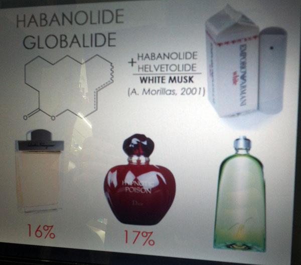 семинар по парфюмерной химии