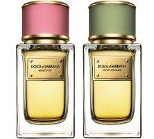 Dolce & Gabbana Velvet Rose и Velvet Bergamot