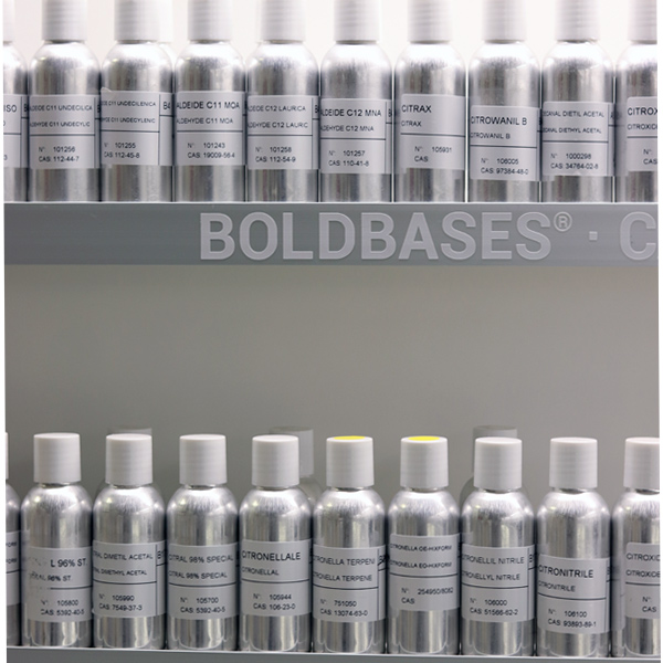 Moellhausen BoldBases