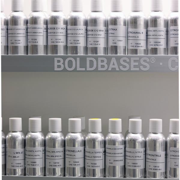 Moellhausen BoldBases