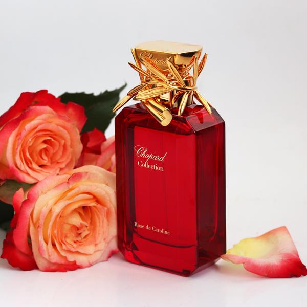 Rose de Caroline Chopard