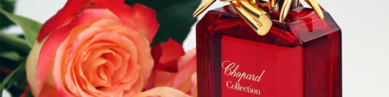 Rose Caroline Chopard perfume review Aromablog